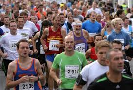 New Forest Marathon Profile