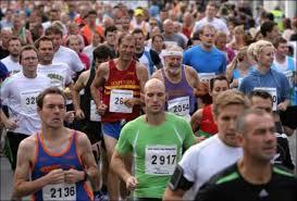 New Forest Marathon Profile