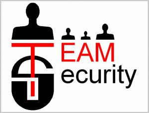 Team Security Logo